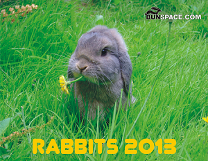 Bunspace.com Rabbit Calendar 2013